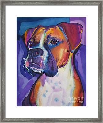 Boxer Dog Portrait Framed Print by Robyn Saunders