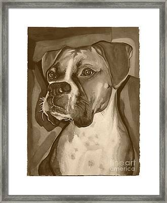 Boxer Dog Sepia Print Framed Print by Robyn Saunders
