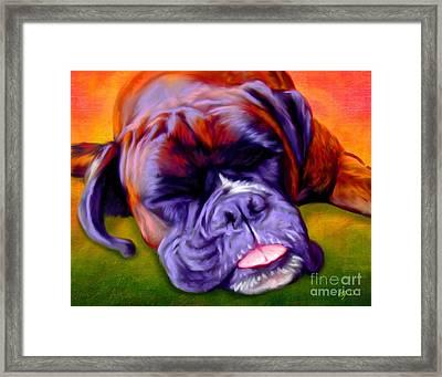 Boxer Framed Print by Iain McDonald