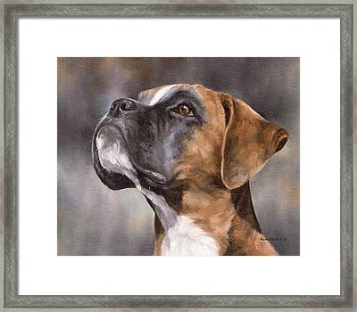 Boxer Painting Framed Print by Rachel Stribbling