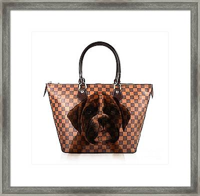 Boxer Pup Hand Bag Painting Framed Print by Marvin Blaine