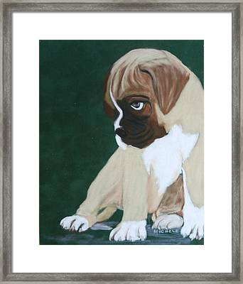 Boxer Pup Framed Print by Michele Turney