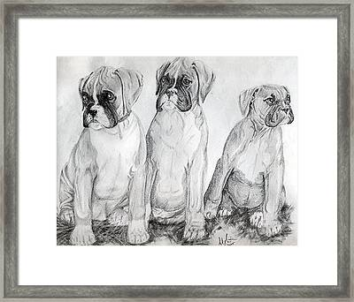 Boxer Puppy Dog Poster Print Framed Print by Olde Time  Mercantile