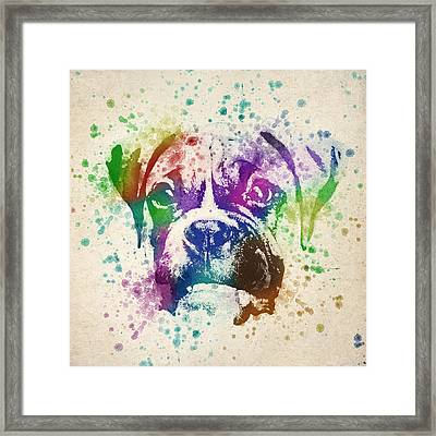 Boxer Splash Framed Print