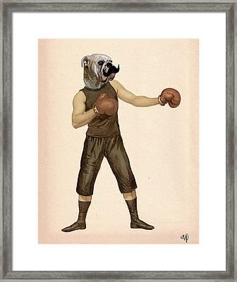 Boxing Bulldog Framed Print by Kelly McLaughlan