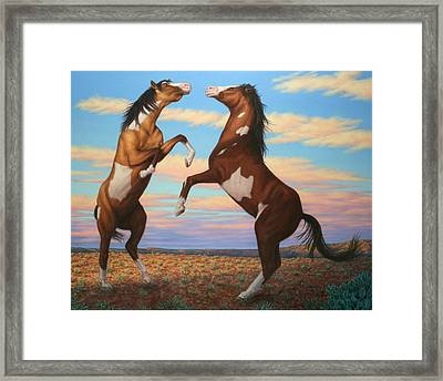 Boxing Horses Framed Print by James W Johnson