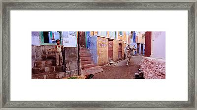 Boy And A Bull In Front Of Building Framed Print