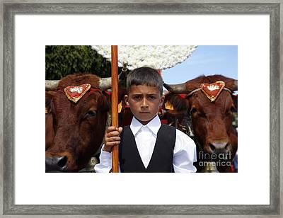 Boy And Oxen Framed Print by Gaspar Avila