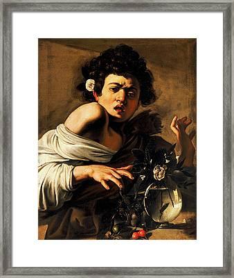Boy Bitten By A Lizard Framed Print by