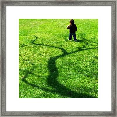 Boy In A Tree 2 Framed Print