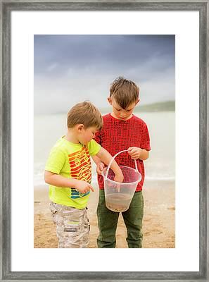 Boys Holding Crab Framed Print by Samuel Ashfield