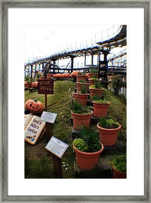 Brad And Bellas Garden Framed Print by Doc Braham
