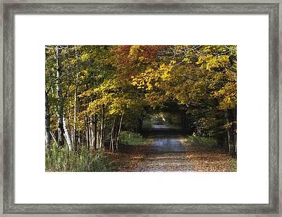 Bradford County Fall 2013 Framed Print