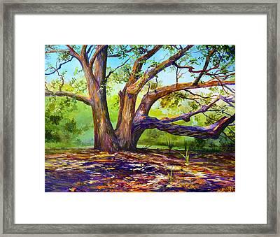 Braided Oak Framed Print by AnnaJo Vahle