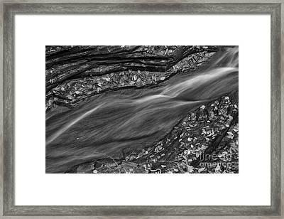 Braided Water Framed Print by Michele Steffey