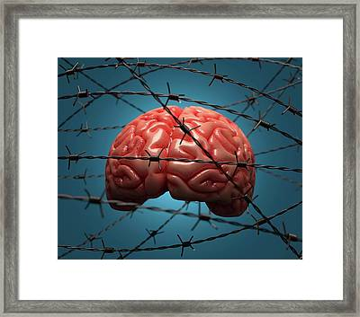 Brain And Barbed Wire Framed Print by Ktsdesign