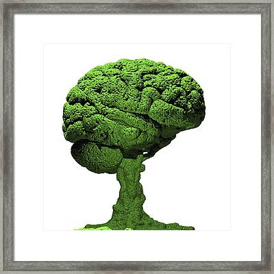 Brain As Bonsai Tree Framed Print by Russell Kightley