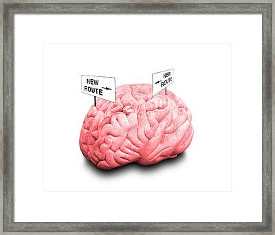 Brain Plasticity Framed Print by Victor De Schwanberg/science Photo Library