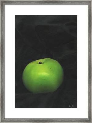 Bramley Apple On Black Satin Framed Print by Catherine Considine