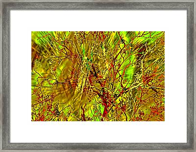 Branch Location Framed Print