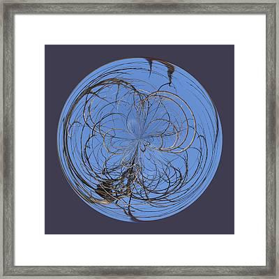 Branch Orb Framed Print