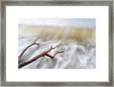 Branches In Water Framed Print by Randi Grace Nilsberg
