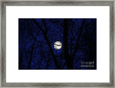 Branches To The Moon Framed Print by Neal Eslinger