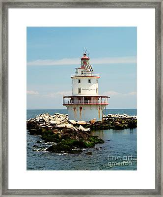 Brandywine Shoal  Lighthouse Framed Print by Nick Zelinsky