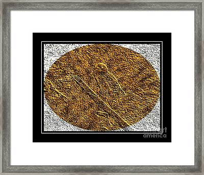 Brass Etching - Oval - Snowy Owl Framed Print by Barbara Griffin