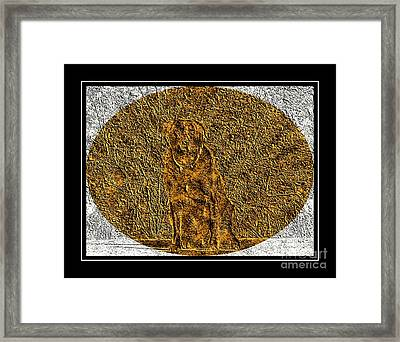 Brass Etching - Oval - Labrador Retriever Framed Print by Barbara Griffin