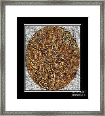 Brass-type Etching - Oval - Daisies And Butterfly Framed Print by Barbara Griffin