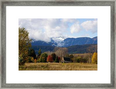 Framed Print featuring the photograph Brauns Island In Autumn by Sylvia Hart