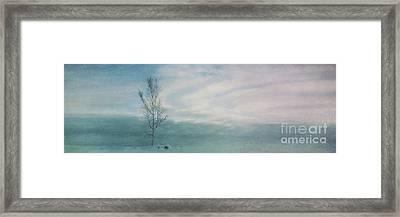 Brave The Black Frost Framed Print by Priska Wettstein