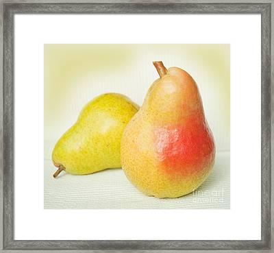 Brazen Pear Framed Print by Lena Wilhite