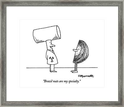 Brazil Nuts Are My Specialty Framed Print