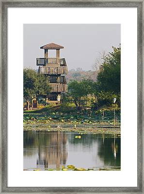 Brazos Bend State Park And Wetlands Framed Print by Larry Ditto