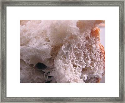 Bread - 2738 Framed Print by Sandy Tolman