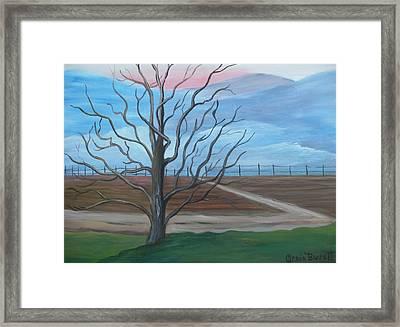 Break Of Day Framed Print by Glenda Barrett