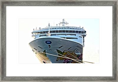 Breakaway Norwegian Framed Print
