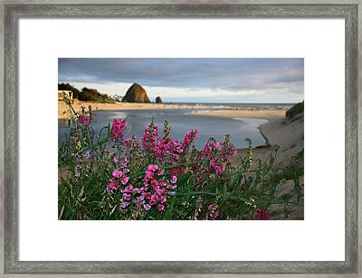 Breakers Point Oregon Framed Print