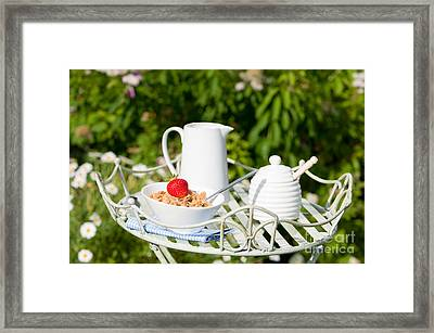Breakfast Outdoor Framed Print by Amanda Elwell