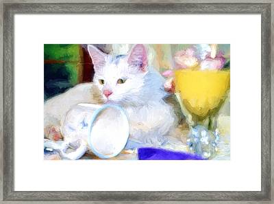 Breakfast With The White Cat Framed Print by Bob Orsillo