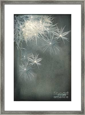 Framed Print featuring the photograph Breaking Free ... by Chris Armytage