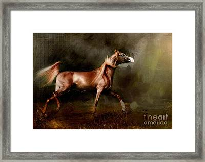 Breaking Free Framed Print
