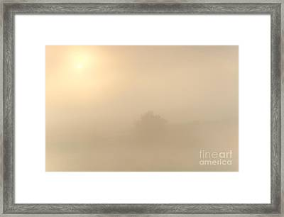 Breaking Through Framed Print by Mike  Dawson