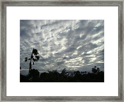 Breaking Through Framed Print by Zinvolle Art