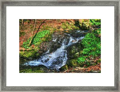 Framed Print featuring the photograph Breath Deeply by Doc Braham