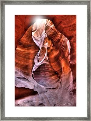 Breath Of Life Framed Print by David Andersen