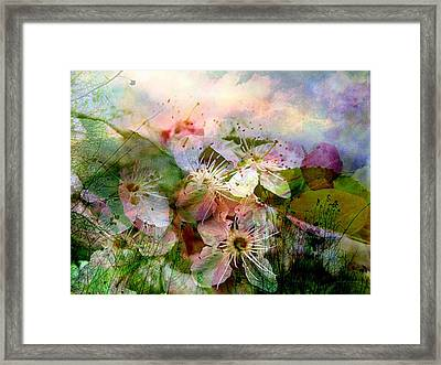 Breath Of Spring Framed Print by Shirley Sirois