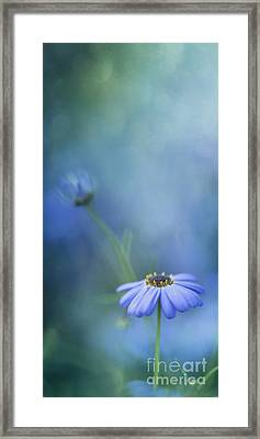 Breathe Deeply Framed Print by Priska Wettstein